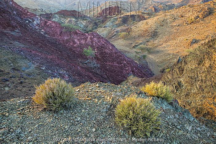 Sedimentary rocks in the Hajar Mountains. United Arab Emirates. November 2015.