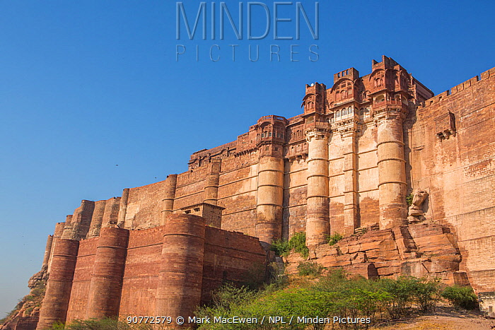 Mehrangarh Fort, located in Jodhpur, Rajasthan, India. March 2015