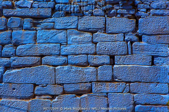 Brick wall in the Blue City, Jodhpur, Rajasthan, India.