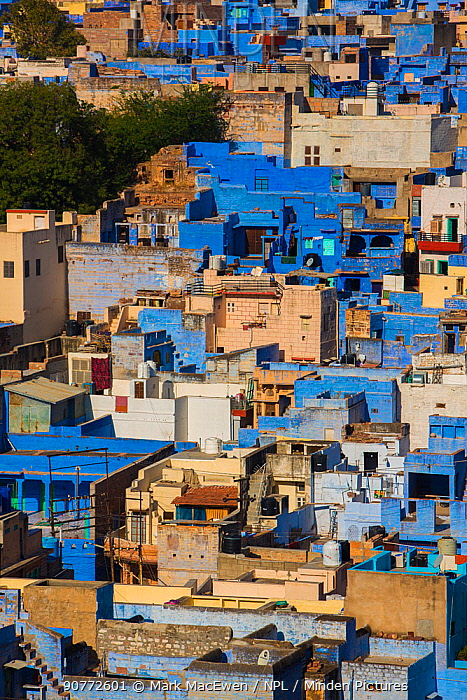 Aerial view of The Blue City, Jodhpur, Rajasthan, India.