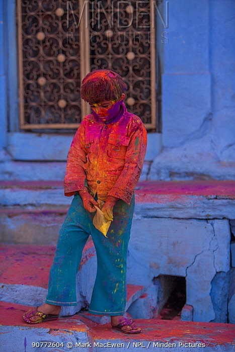Children covered in colour powder in Holi festival,  Jodhpur, Rajasthan, India. March 2015
