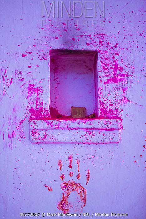 Paint on wall during Holi festival,  Jodhpur, Rajasthan, India.
