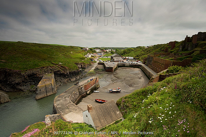 Little harbour at Porth Gain, built to transport slate from nearby Abereiddy, Pembrokeshire, Wales, UK, May.