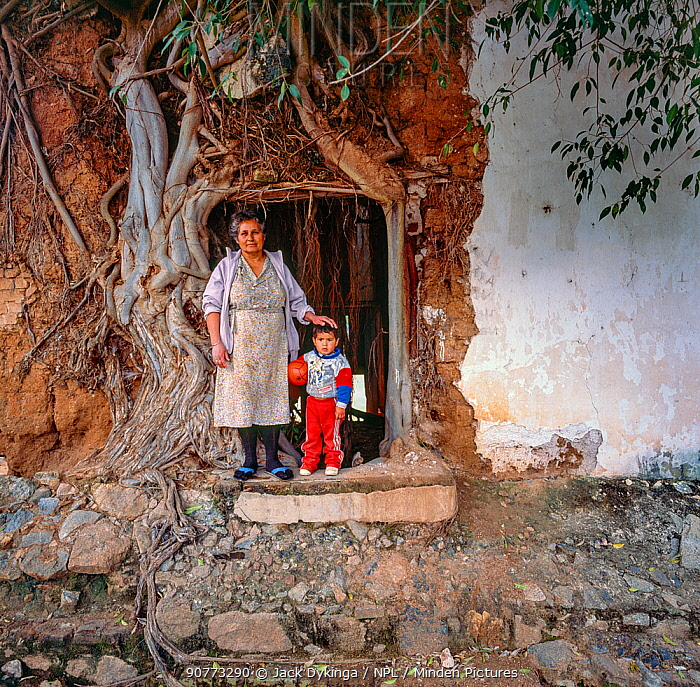 Grandmother and grandson  standing next to Strangler fig (Ficus padifolia) covering the wall of their home, Aduana, near Alamos, Sonora, Mexico 1992
