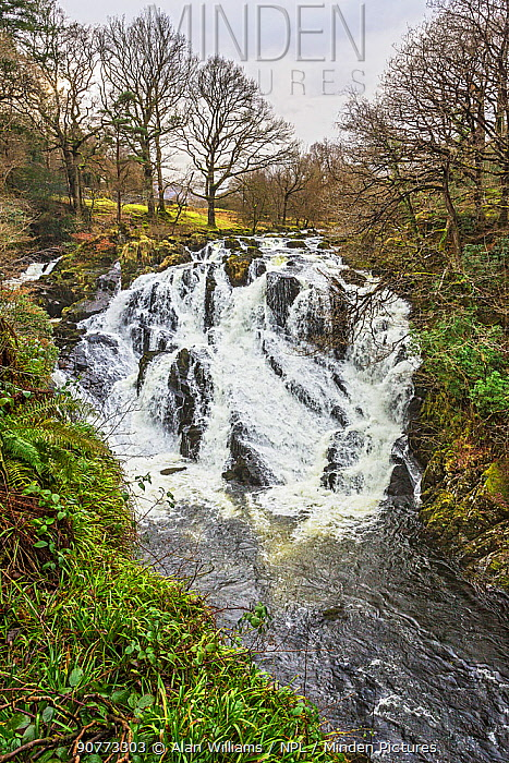 Swallow Falls on Afon (River) Llugwy west of Betws-y-coed, Snowdonia National Park, North Wales, UK, February.