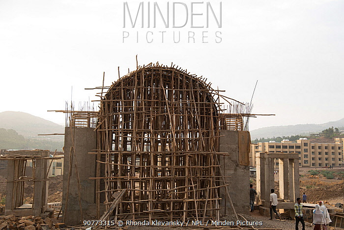 New entrance arch in construction, Gondar University, Ethiopia. April 2015.