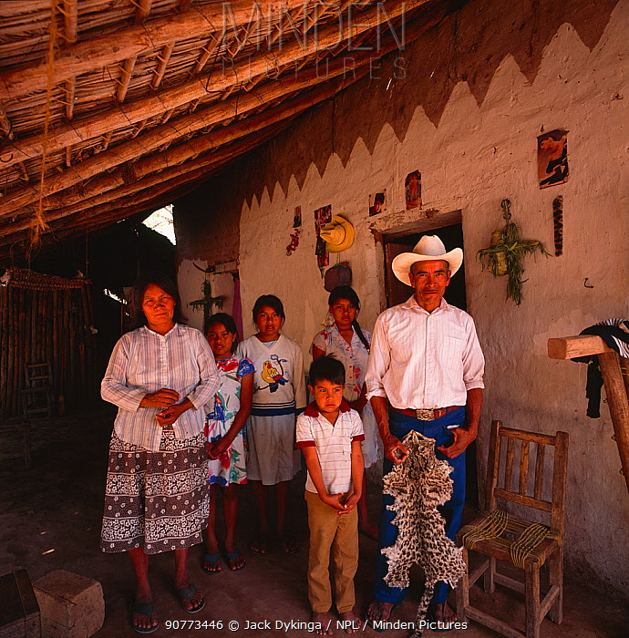 Family living near the Rio Cuchujaqui with hunted Ocelot (Felis pardalis) skin / pelt. Sierra Madre foothills, Mexico 1992