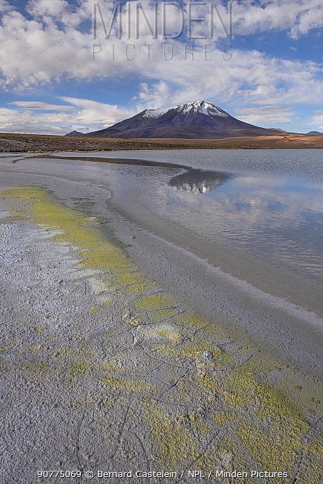 Laguna Hedionda,  Altiplano, Bolivia