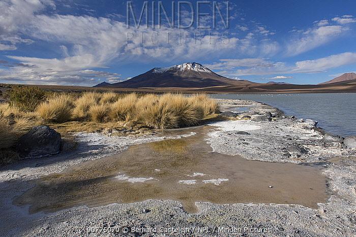 Laguna Hedionda, between Polques and Quetena, Altiplano, Bolivia, April 2017.