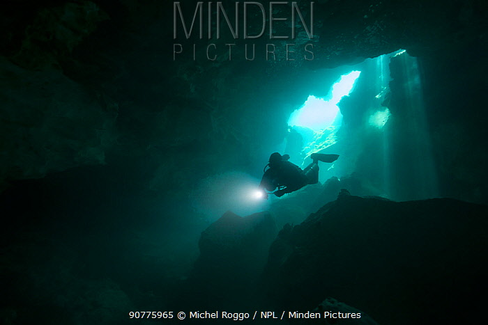 Diver in Cenote Cristalino, Quintana Roo, Yucatan Peninsula, Mexico.  May. Photographed for The Freshwater Project