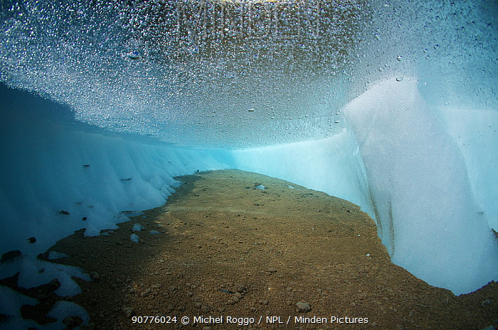 Underwater view of cryoconite hole, a hole formed by windblown dust and particles which warm up ice of glacier and creates meltwater holes. Gorner Glacier, Valais Alps, Canton Valais / Wallis, Switzerland. August. Photographed for The Freshwater Project