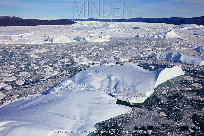 Aerial view of the Ilulissat Icefjord, with the Sermeq Kujalleq Glacier or Jakobshavn Isbrae entering the sea,  Ilulissat Icefjord UNESCO World Heritage Site, Greenland,  2014 August 2014 . Photographed for The Freshwater Project