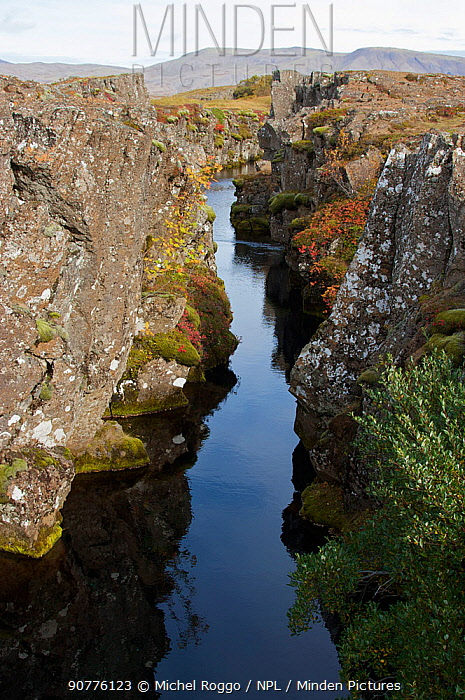 Rift between North American and Eurasian tectonic plates at Thingvellir, Thingvellir National Park, UNESCO World Heritage Site, Iceland. September. Photographed for the Freshwater Project.
