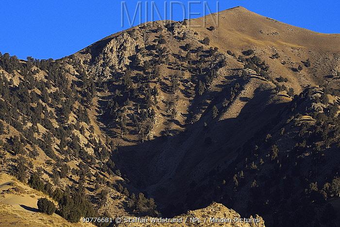 Dulan Hills, Chaka Western Desert, Tibetan Plateau, Qinghai, China October 2016.