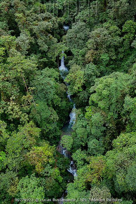 Waterfall inside a rainforest located in a transition between Choco and cloud forest.??Mashpi, Pichincha, Ecuador.??