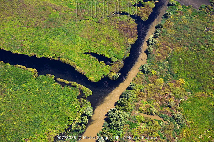 Aerial view of the Danube Delta with murky water of the Danube river mixing with the clear water of the delta channels, Danube Delta Biosphere Reserve UNESCO World Heritage Site,, Romania May 2014. Photographed for The Freshwater Project