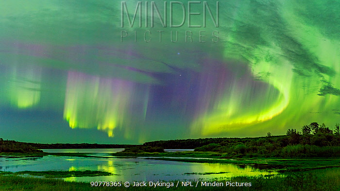 Aurora Borealis over the South Heart River, Winagami Wildland Provincial Park, Alberta, Canada. August 2017.