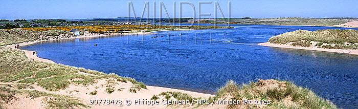 Ythan Estuary at Forvie National Nature Reserve / Sands of Forvie, Newburgh, Aberdeenshire, Scotland, UK, May
