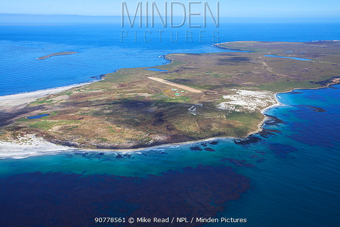 Aerial view of part of Sealion Island, Falkland Islands, December 2016.