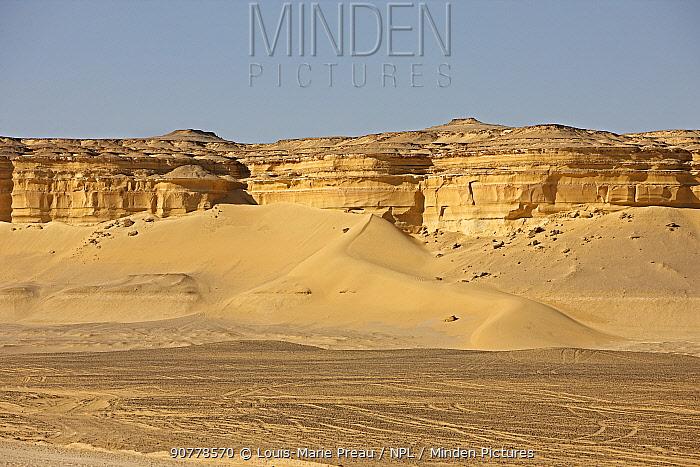 Wadi El Hitan (Whale Valley) Wadi Hitan National Park UNESCO World Heritage Site, Egypt. November 2008.