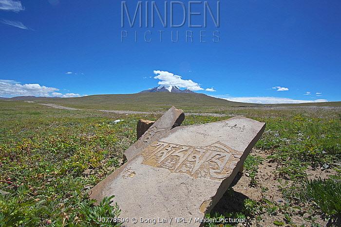 Mani stone, Sanjiangyuan National Nature Reserve, Qinghai Hoh Xil UNESCO World Heritage Site, Qinghai-Tibet Plateau, Qinghai Province, China.
