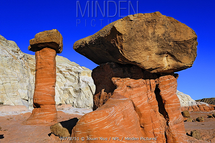 Cap-rock pinnacles called hoodoos, Grand Staircase-Escalante National Monument,  Utah, USA