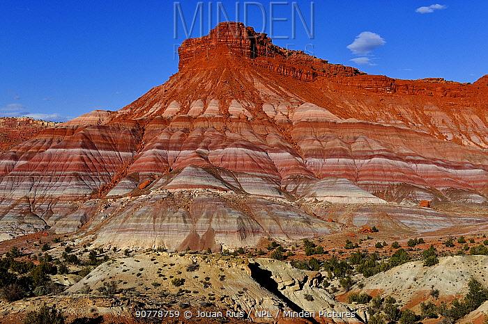Coloured bentonite hills, Paria Canyon, Grand Staircase-Escalante National Monument, Utah, USA. March 2014.