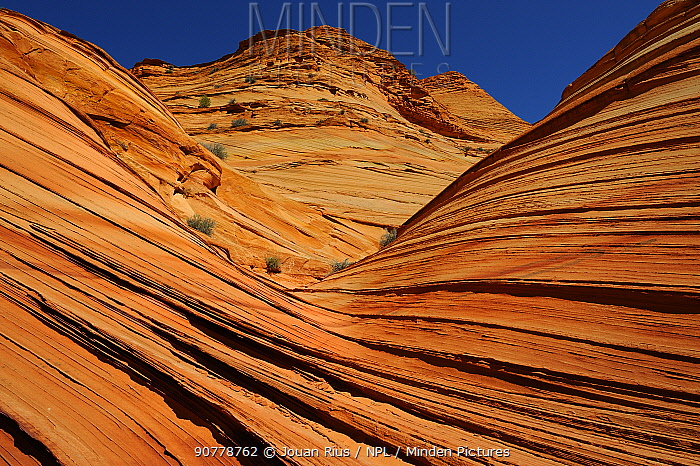 Coyotte Buttes, patterns formed by erosion in Sandstone, Vermilion Cliffs National Monument, Arizona, USA, March 2014.