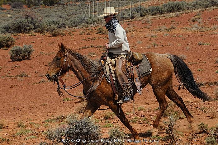 Cowboy on horseback,   Grand Staircase-Escalante National Monument, Utah, USA, March 2014.