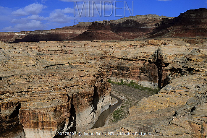 Dirty Devil River, Glen Canyon Recreation Aera, Utah, USA, March 2014.