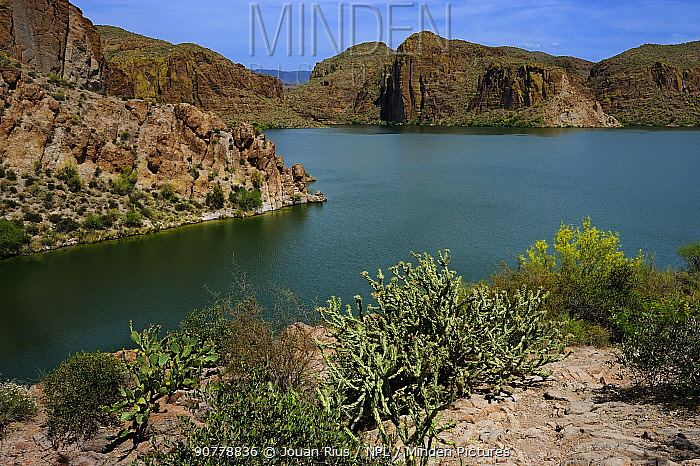 Canyon Lake, Tonto National Forest, Apache Trail, Arizona, USA. April 2014.