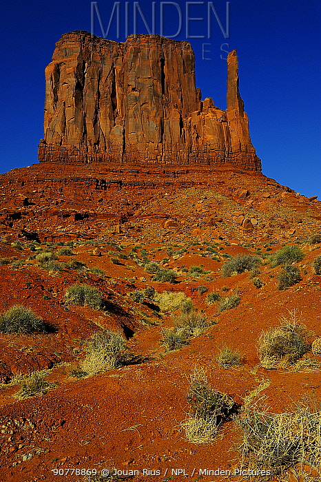 West Mitten Butte, Monument Valley Navajo Tribal Park, Utah-Arizona, USA