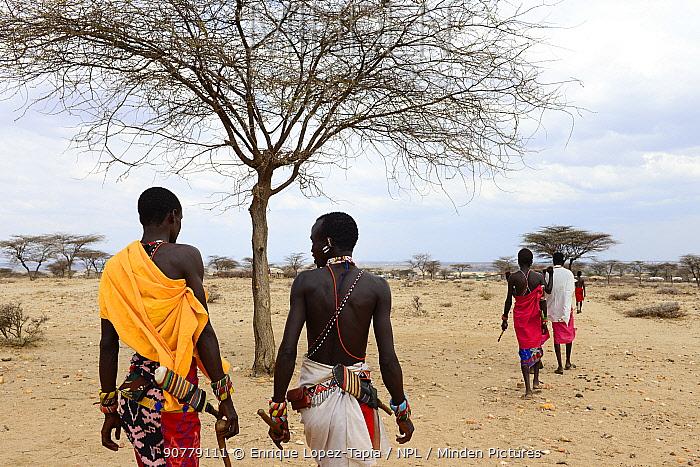 Samburu men walking away across dry landscape, near Samburu National Reserve, Kenya. September 2017.