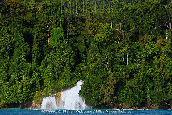 Waterfall spilling into the sea from lowland rainforest, Kumawa Peninsula, Mainland New Guinea, Western Papua, Indonesian New Guinea
