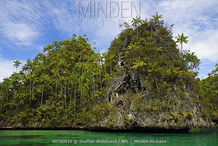 Karst island archipelago, Triton Bay, Mainland New Guinea, Western Papua, Indonesian New Guinea