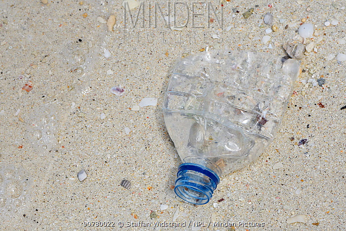 Plastic bottle discarded in the sea and washed ashore, Triton Bay, Mainland New Guinea, Western Papua, Indonesian New Guinea