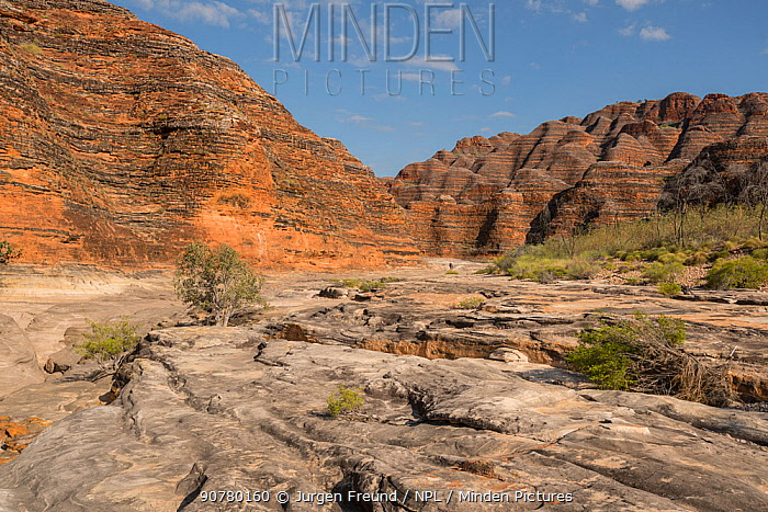 Dry river bed leading to the extraordinary array of banded, beehive-shaped cone towers comprising the Bungle Bungle Range, Purnululu National Park, UNESCO World Heritage Site, Kimberley, Western Australia. June 2016.