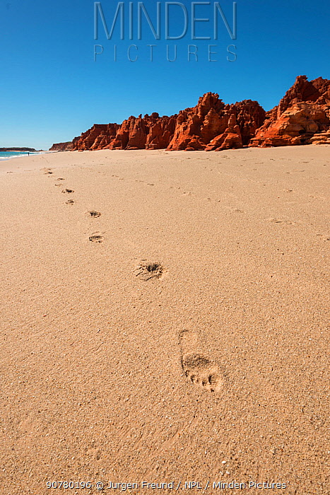 Footsteps on the white sands, Broome, Kimberley, Western Australia. July 2016.