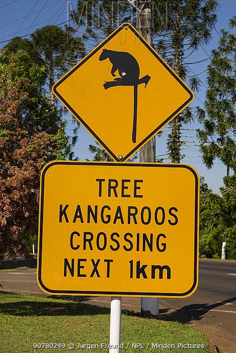Lumholtz's tree-kangaroo road sign, Queensland, Australia