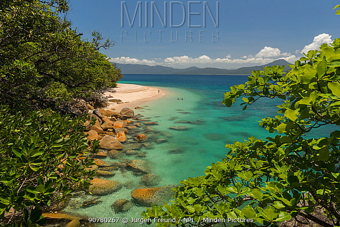 Nudey Beach with tourists and mainland Cairns in the background, Fitzroy Island, Tropical Far North Queensland, Australia 42339