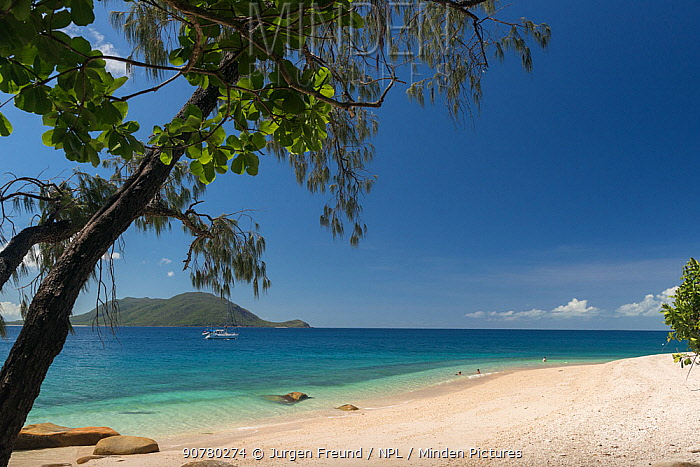 Nudey Beach with boat, Fitzroy Island, Tropical Far North Queensland, Australia. January 2016.
