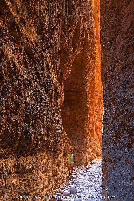 Echidna Chasm in  Bungle Bungle Range,  Purnululu National Park, UNESCO World Heritage Site, Kimberley, Western Australia. June 2016.