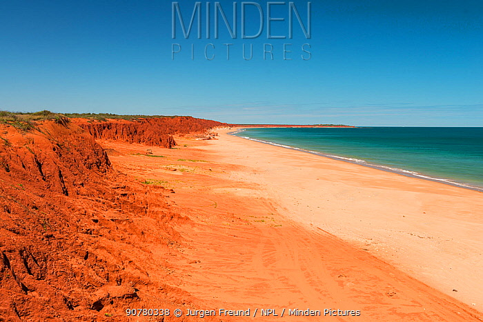 Ochre-coloured earth and sandstone cliffs with white sands beach Dampier Peninsula, Kimberley, Western Australia. July 2016.