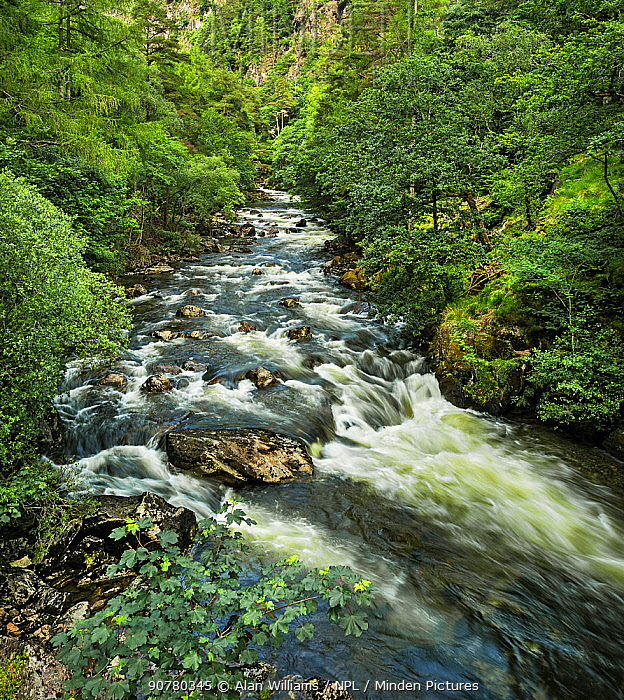 Glaslyn River flowing through the Aberglaslyn Pass, looking north from the bridge near Nantmor, south of Beddgelert, North Wales, UK, June 2017