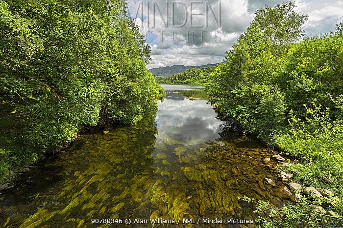 Glaslyn River flowing west out of Llyn Dinas towards Beddgelert, Snowdonia, North Wales, UK, June 2017