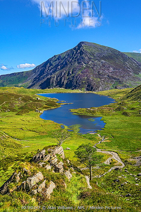 Llyn Idwal viewed from the path up to the Devil's Kitchen with Pen yr Ole Wen in the background, Snowdonia National Park, North Wales, UK, July 2017
