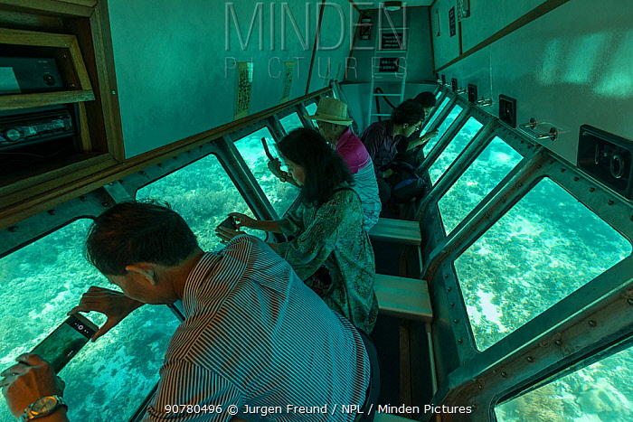 Tourists in a glass bottom boat looking at corals around the shallow reefs of Green Island, Green Island, Great Barrier Reef, Queensland, Australia October 2016.