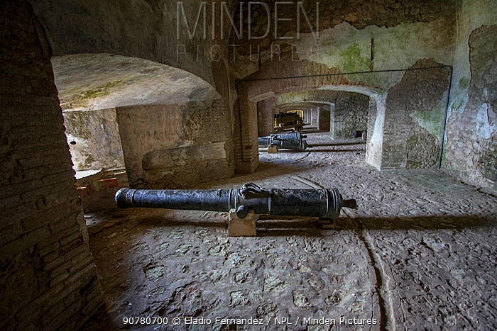 Row of cannons in La Citadelle fortress, UNESCO World Heritage Site, Haiti. August 2016.