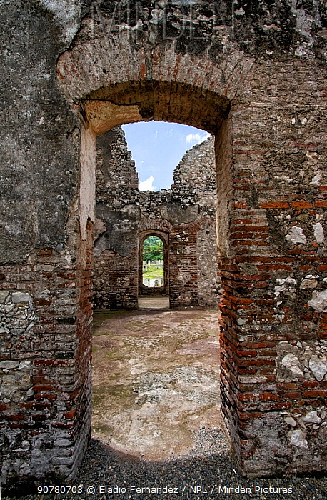 Doorway inside the ruins of the Palace of San Souci, Milot, Haiti. August 2016.