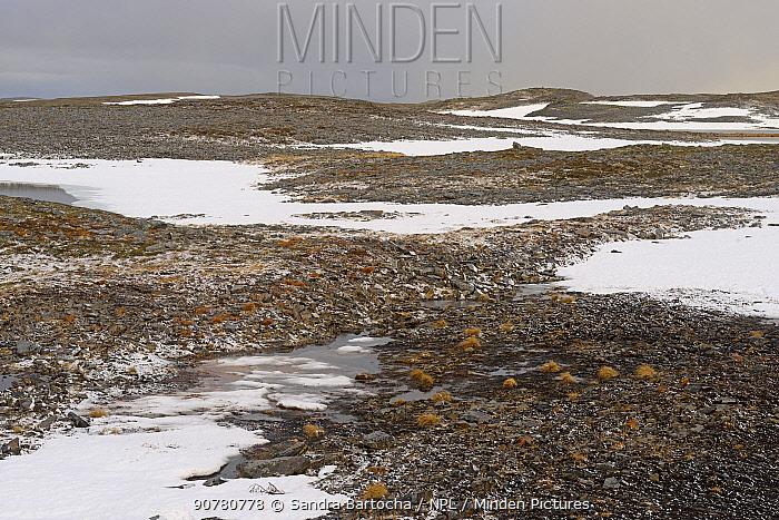 Tundra landscape, Nordkinn Peninsula, Norway, June 2013.